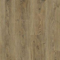 Panele podłogowe Tempo Bermont Oak S172203 AC5 8mm Faus