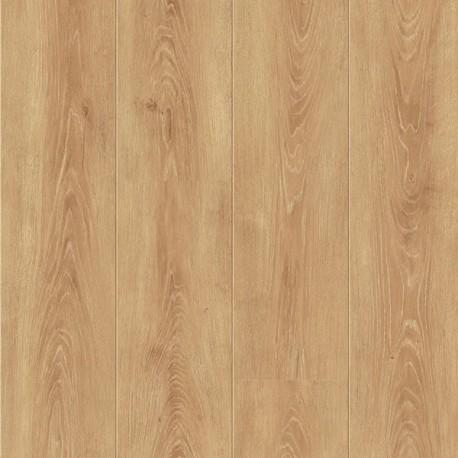 Panele podłogowe Sense Nutmeg Oak S180048 AC6 8mm Faus