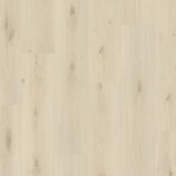 Panele podłogowe Mandal pro Dąb Klifowy L0247-05027 AC5 8mm Pergo