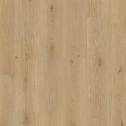 Panele podłogowe Mandal pro Dąb Winnica L0247-05023 AC5 8mm Pergo