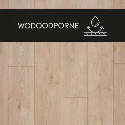 Panele podłogowe Hydro24 Dąb Spokojny 88237 AC4 8 mm Premium Floor