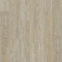 Panele winylowe Starfloor Click 55 Brushed Pine Grey 4,5mm Tarkett