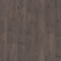 Panele podłogowe Traditions Sosna Truflowa 61013 9mm Balterio + podkład GRATIS