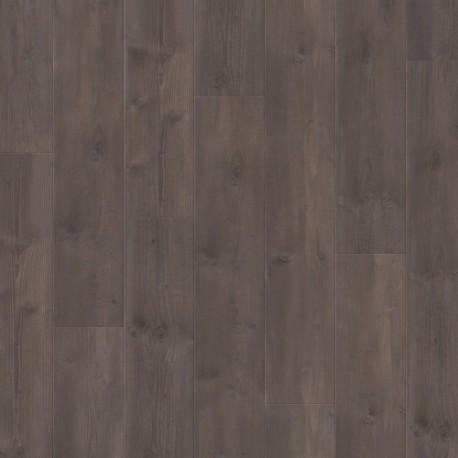 Panele podłogowe Traditions Sosna Truflowa 61013 9mm Balterio