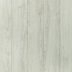 Panele podłogowe Gold Plus Dąb Alpejski AC6 12mm Wild Wood
