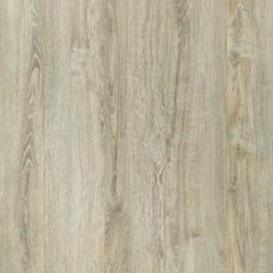 Panele podłogowe Gold Plus Dąb Europejski AC6 12mm Wild Wood